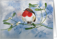 Christmas, Robin and Mistletoe card