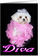 Little Diva Birthday Party Invitation card