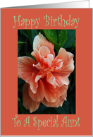 Birthday, Aunt, Double Bloom card