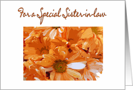 Happy Birthday sister-in-law, Orange Daisies card