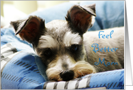 Feel Better Mom, Mini Schnauzer card
