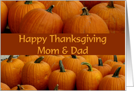 Happy Thanksgiving Mom & Dad, pumpkin patch card