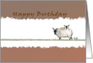 Happy Birthday Sheep, Baaaaaa Another Year card