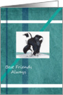 Penquins Best friends card