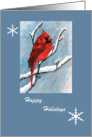 Cardinal and Snowflakes Happy Holidays card