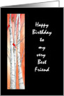 Birthday Friend card