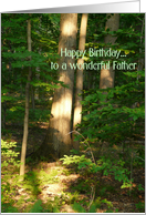 Happy Birthday to a wonderful Father card
