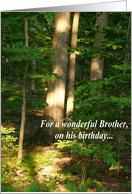 For a wonderful brother on his birthday/Forest View card