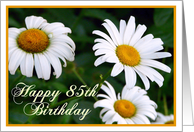 Happy 85th Birthday! Daisies card