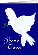 Shana Tova!-White Dove with olive branch card