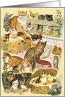 Kitty World All Occasion Vintage Card
