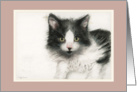 Black and White Kitty card