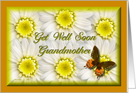 Get Well Soon Grandmother card