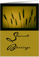 Shavuot Blessings / Golden Wheat card