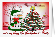 Merry Christmas ~ Nephew & Family ~ A Snowman's Christmas Blessings card