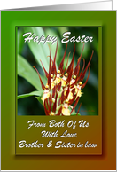 Easter ~ From Both Of Us ~ Brother & Sister in law ~ Orchids card