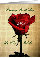 Happy Birthday ~ Wife / 24th ~ Red Rose card