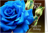 60th Birthday / Wife ~ A Digitally Painted Blue Rose card