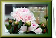 Grandmother - Get Well ~ Pink Peonies In The Garden card