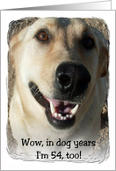 Dog Years - 54 card