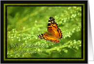 Sympathy - Butterfly on Linen look card