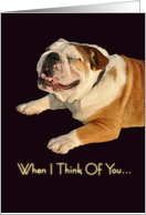 Smiling Bulldog card