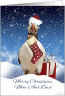 Mom And Dad Christmas Puffin Card With Stocking And Snow card