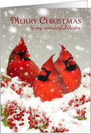 Sister, Oil Painted Red Cardinals In Snow Scenery card