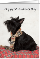 Scottish Terrier St. Andrew's Day card