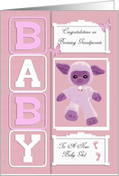 Baby Girl New Congratulations Grandparents card