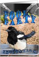 Pool Party Invitation card with magpie card