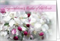 Mother of the bride Congratulations card with flowers card