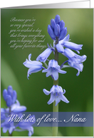 Nana Birthday Card - Bluebells card