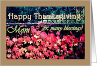 MOM Happy Thanksgiving with Red Leaves card