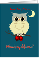 Twins First Valentine's Day Cute Owl Humor Whoo's my Valentine? card