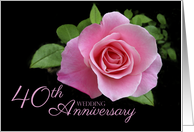 40th Wedding Anniversary Romantic Pink Rose card