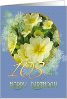 103rd Birthday Primroses Blue and Yellow card