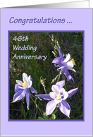 Anniversary - 46th card