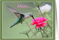 Mother's Day Hummingbird card