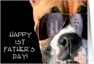 Happy 1st Father's Day boxer card