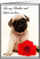 Happy Anniversary Brother and sister-in-law Pug puppy card