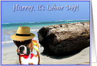 Happy Labor Day boxer card