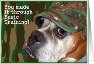 Congratulations you made it through basic training Boxer Dog card
