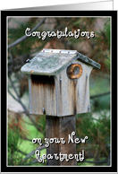 Congratulations on your new apartment Birdhouse card