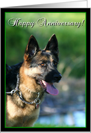 Happy Anniversary German Shepherd card