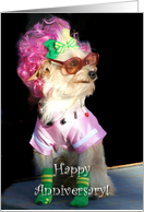 Happy Anniversary, Stylish Dog with glasses card