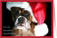 Merry Christmas to my grandchildren Boxer Dog card