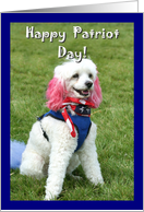 Happy Patriot Day Patriotic Poodle dog card