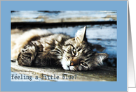 Feeling Blue - Encouragement (Cat) card