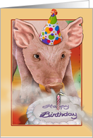 Birthday Pig card
